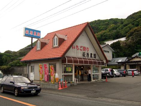 萩原農園:静岡県静岡市